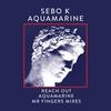 Couverture de l'album Aquamarine