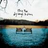 Couverture de l'album Deep Enough to Dream