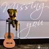 Couverture du titre Missing You