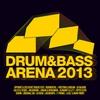 Couverture de l'album Drum & Bass Arena 2013