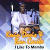 Couverture de l'album I Like to Mambo