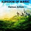 Couverture de l'album Kingdom of Magic