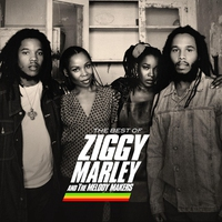 Cover of the track The Best of Ziggy Marley & the Melody Makers