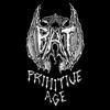 Couverture de l'album Primitive Age
