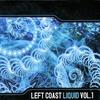 Cover of the album Left Coast Liquid, Volume 1