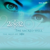 Couverture de l'album The Sacred Well - The Best of 2002