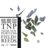 Cover of the album Field of Reeds