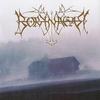 Cover of the album Borknagar