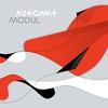 Couverture de l'album Modul