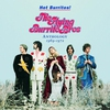 Couverture de l'album 20th Century Masters: The Millennium Collection: The Best of The Flying Burrito Brothers