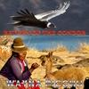 Couverture de l'album Return Of The Condor