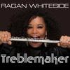Cover of the album Treblemaker
