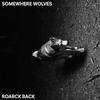 Couverture de l'album Roarck Back - EP