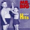 Couverture de l'album Mr. Big: Greatest Hits (Remastered)