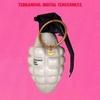 Couverture de l'album Digital Tenderness