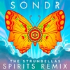 Couverture de l'album Spirits (Sondr Remix) - Single