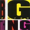 Couverture de l'album Big Thing