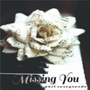 Cover of the album Missing You