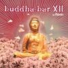 Couverture de l'album Buddha-Bar XII (by Ravin)