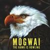 Couverture de l'album The Hawk Is Howling