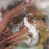 Cover of the album Strange Boy (feat. The Shacks) - Single
