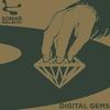 Cover of the album Sonar Kollektiv: Digital Gems (Compiled By Jazzanova)