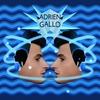 Cover of the album Gemini