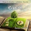 Cover of the album Evasion Evasion