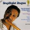 Couverture de l'album Daylight Ragas