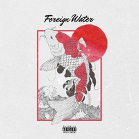 Cover of the track Foreign Water