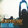 Cover of the album Awakening: Live From Chicago