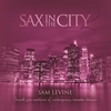 Couverture de l'album Sax In the City 2: Smooth Jazz Renditions of Contemporary Romantic Classics