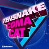 Couverture de l'album Coma Cat - EP