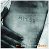 Couverture de l'album Scar (Bonus Track Version)