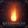 Couverture de l'album Gaslichtromantik