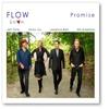 Cover of the album Promise (feat. Will Ackerman, Fiona Joy Hawkins, Lawrence Blatt & Jeff Oster)