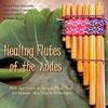 Couverture de l'album Journeys of the Flute