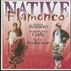 Couverture de l'album Native Flamenco