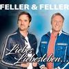 Cover of the album Liebes Liebesleben (Radio Version) - Single