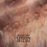 Couverture du titre Citizen of Glass