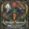 Couverture de l'album Brazilian Shamans 2