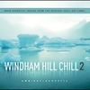 Cover of the album Windham Hill Chill 2