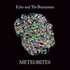 Couverture de l'album Meteorites