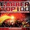 Couverture de l'album Gabber Top 100