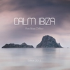 Couverture de l'album Calm Ibiza - Edition 2012 (Bonus Track Version) [Pure Ibiza Chillout]