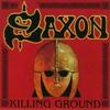 Couverture de l'album Killing Ground