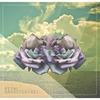 Couverture de l'album Petal