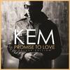 Couverture de l'album Promise To Love (Deluxe)