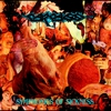 Cover of the album Symphonies of Sickness