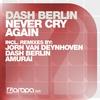 Couverture de l'album Never Cry Again (Remixes)